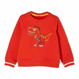 Boys Sweatshirt mit Dino Stickerei