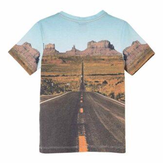 Jungen T-Shirt mit Dino Fotoprint