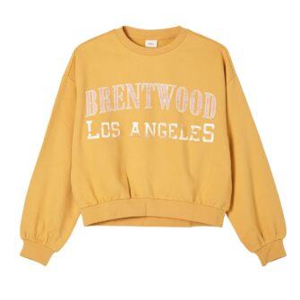 Kurzes Sweatshirt im Vintage Style